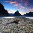 Milford Sound beautiful view, New Zealand — Stock Photo