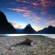 Milford Sound, South Island, New Zealand — Stock Photo