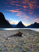 Breathtaking view at Milford Sound, South Island, New Zealand — Stock Photo