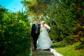 Bride and groom on the background of green park — Stock Photo