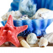 Starfish 2 — Stock Photo #18969915