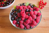 Raspberry and Black Currant — Stock Photo