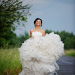 Smiling bride in a wedding dress — Stockfoto