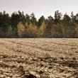 Stock Photo: Plowed farmland
