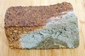 Wholemeal bread moldy — Stock Photo