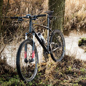 Bicycle sport in forest — Foto de Stock