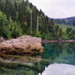 Clear mountain lake and forest — Stock Photo