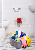 Washroom cleaning services — Stock Photo