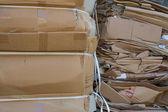 Waste management paper cardboard — Stock Photo