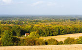 UK countryside Guildford Surrey — Stock Photo