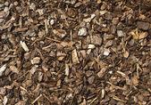 Träspån — Stockfoto