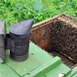 Apiary. Beekeeper equipment — Stock Photo