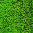 Bright green moss background — Stock Photo
