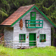 Small wooden house — Stock Photo #41026431
