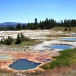 Small ponds in Yellowstone National park — Stock Photo #18819093