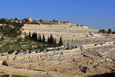 Olive Mountain in Jerusalem — Stock Photo