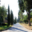 Appian Way — Stock Photo