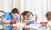 Děti dělat domácí úkoly — Stock fotografie