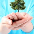 I care about the environment - green to me — Stock Photo #46847285