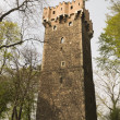 Medieval tower defense — Stock Photo #25160377