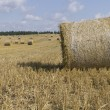 Golden hay bales in Polish countryside — Stock Photo