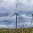 Stock Photo: Windmills for renewable electric energy production in Polish Pomerania