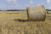 Golden hay bales in Polish countryside — Stockfoto