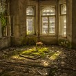 Old chair in an abandoned dilapidated house — Foto Stock