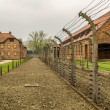 Stock Photo: Chimneys of Auschwitz