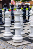 A large chessboard — Stock Photo