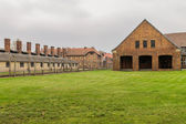 Chimneys of Auschwitz — Foto de Stock