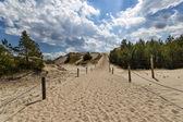 Moving dunes — Stock Photo