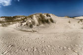 Dune in movimento — Foto Stock