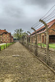 The concentration camp — Photo