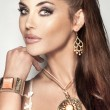 Portrait of attractive brunette beauty with beautiful jewellery. — Stock Photo