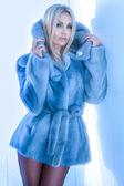 Attractive blonde beauty posing wearing fur. — Stock Photo