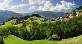 Beautiful panorama of Liechtenstein — Stock Photo