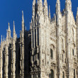 Cathedral of Milan - Stock Photo