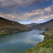 Alto Douro Wine Region - Stock Photo