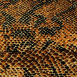 Royalty-Free Stock Photo: Yellow snake skin background