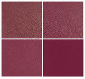 Set of violet animal leather — Foto de Stock