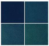 Set of blue animal leather — Stockfoto