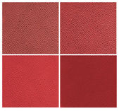 Set of red animal leather — Foto de Stock
