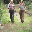 Stock Photo: Senior couple cross country walking