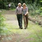 Romantic elderly couple enjoying a walk — Stock Photo #25587483