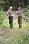 Senior couple cross country walking — Stock Photo