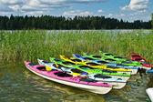 Canoe's — Stock Photo
