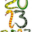 2013 New snake Year — Stock Vector