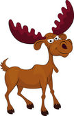 Funny moose cartoon — Stock Vector