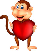 Monkey with red heart — Stock Vector